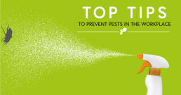 top tips for workplace pest-control