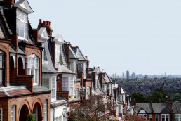 residential-pest-control-services-in-London